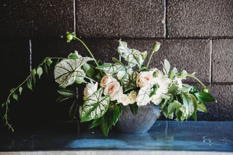 Rental Decor, Potted Arrangement, A-symmetrical, Lang Floral Designs, Chattanooga Wedding Florist and Coordinator. PHOTO CREDIT: Haylee Gaffin